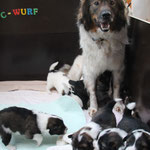 tolle Mama!