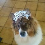 Cailin darf mit auf einem Geburtstag
