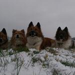wir lieben Schnee