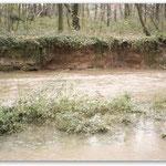 mittleres Hochwasser -Prallhang