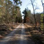 im Lorscher Wald