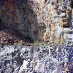 Steinbruchwand herangezoomt - Hat hier links in der Höhle der Uhu sein Quartier?