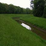 Weschnitz - kurz vor der Mündung