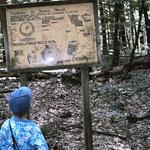 Am Hügelgrab 2 stand noch vor einigen Jahren diese Tafel, auf der archäologische Funde dargestellt waren. Fehlt heute.