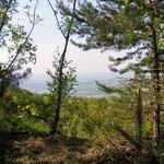 Blick in die Oberrheinische Ebene