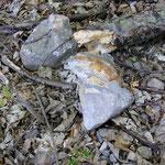 Rhyolith (Quarzporphyr)