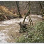 mittleres Hochwasser