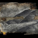 """""""前兆"""" 90×97cm 木材、砂、墨、泥絵具、膠"""