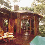 tasala-treetop-lodge