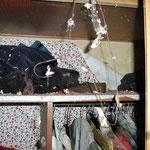 Ein noch voll bestückter Kleiderschrank. #Ghosthunter #Geisterjäger #paranormal #ghost
