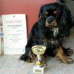 Mein erster Pokal...Best Puppy der Rasse in Salzburg 2014
