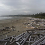 Mystisch: Pacific Rim National Park auf Vancouver Island