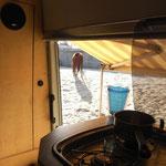 Morgenbesuch am Strand