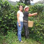 Auf einer Kaffeeplantage in der Zona Cafetera
