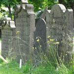 Eine Oase der Ruhe inmitten von Halifax: wunderschöner alter Friedhof