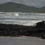 Galapagos: Strand auf der Insel Isabela