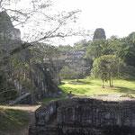 Mainplaza Tikal
