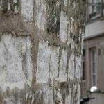 Mur en pierre calcaire : On voit l'usure de la pierre plus enfoncée que les joints en ciment.