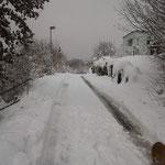 Winterlandschaft Niederlenz