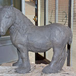 percheron à l'atelier