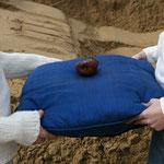 il seppellimento della mela #6