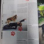 """"""" Journal Frankfurt"""" Ausgabe 4/2014"""