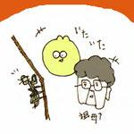 居つくコカマキリ 2012.11.14