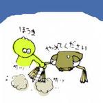 触覚がかわいい 2012.08.06