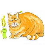 きょうの猫 2012.05.14