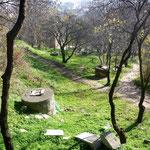 Bergpark mit Wassersilos