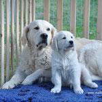 Quennie mit Mama Hazel