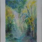 Hautes herbes                                    Pastel        50 x 65