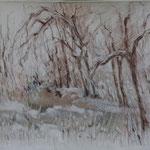 Neige en forêt   Sanguine   50 x 65