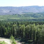 Kohleabbau im Elk Valley bei Elkford.