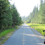 Der Trail nach Canmore. Glatt wie ein Baby-Popo. Da fliegt das Rad fast über den Asphalt.