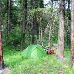 Dieser schöne (klapperschlangenfreie) Platz zum Campieren versöhnte etwas. Zumal die Sonne wieder durch kam.