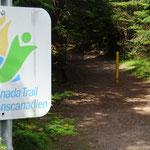 Zurück auf dem Trans Canada Trail.