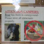 Bärenalarm auf dem Campingplatz.