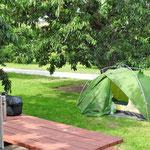 Camping unter Kirschen.