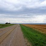 Irgendwo dahinten muss der Highway nach Saskatoon sein.