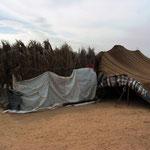 bei den Beduinen