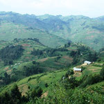Berge und Terrassenfelder