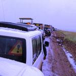 Stau in der Masai Mara