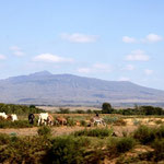 Auf dem Weg zur Massai Mara