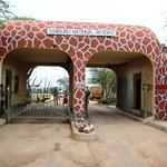 Eingang zum Samburu NP