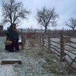 Winter bei den Tiergehegen
