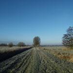 Am Ende der Moorhauptweges