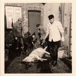 Lange Reihe 24: Das Schwein ist tot ...