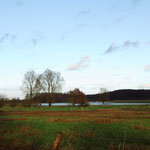 Landunter im Moor nach tagelangem Starkregen - 24. Dez. 2014