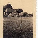 Lange Reihe 24: Blick von der Hauskoppel